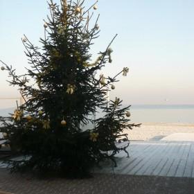 Wesołych Świąt.............