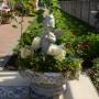 Ogród, Z PAMIĘTNIKA OGRODNIKA...