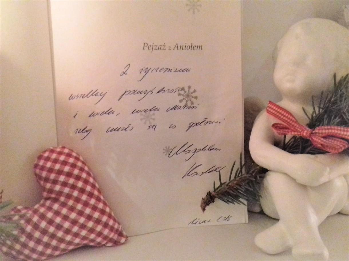 Salon, Ksiązki świąteczne-KOCHAM:) - i udało mi się dostać z autografem autorki&#x3B;)