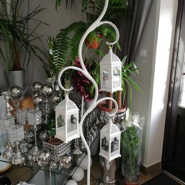 Drzewko latarenki, flower box, klatka