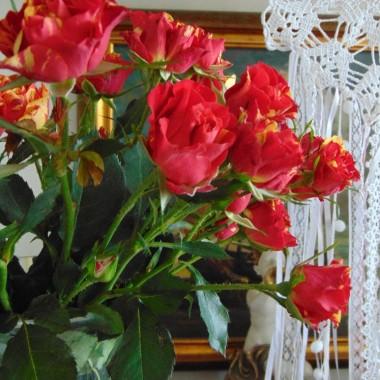 ...............i róże w domu.................