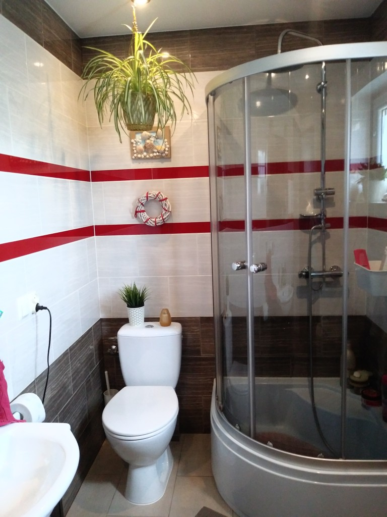 Rośliny, Lato w moim domu - W łazience tez trochę zieleni