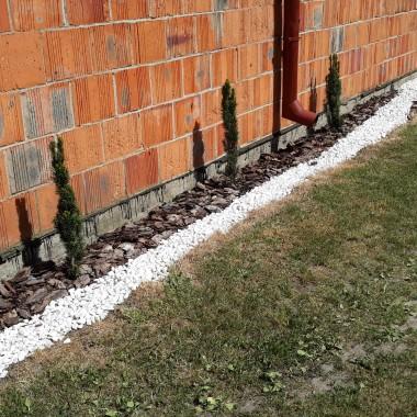 Zdjęcia mojego ogródka.