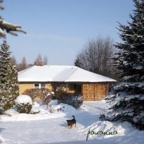 Mój ogród zimą