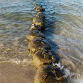 morskie tematy-fotografia