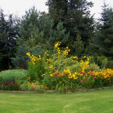 w tej części  kwitną żółte, pomarańczowe i czerwone kwiaty:)
