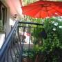 Pozostałe, Borówkowe szaleństwo :) - Ewentualnie można pod parasolem, na tarasie napić się świeżo wyciskanego soku borówkowego :)