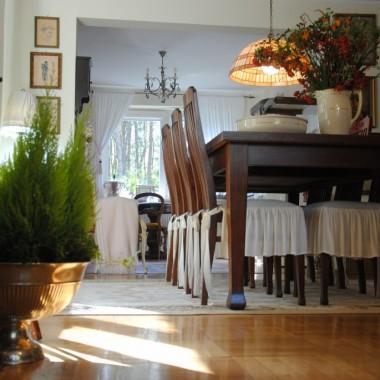 Tak całkiem na przekór zachciało mi się świeżej ,jaskrowo-zielonej roślinności w domu ,a więc cyprysy rządzą :)