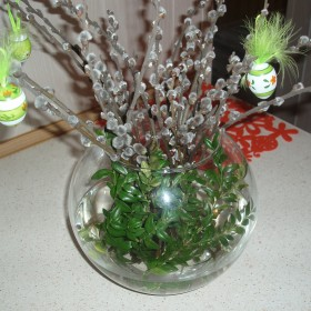 wiosna, kwiaty