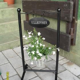 Taras w białych kwiatach:)