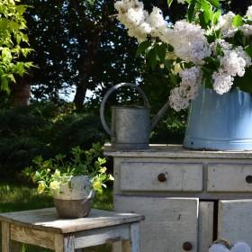 żyję ogrodem... mój skromny cottage style...