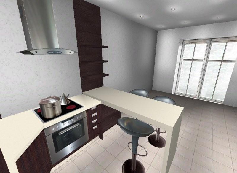 Kuchnia, Planujemy aneks kuchenny - Widok z aneksu na część salonową.