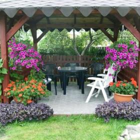 Mój ogródek :)