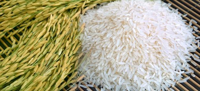 15 zastosowań ryżu, o których nie miałeś pojęcia