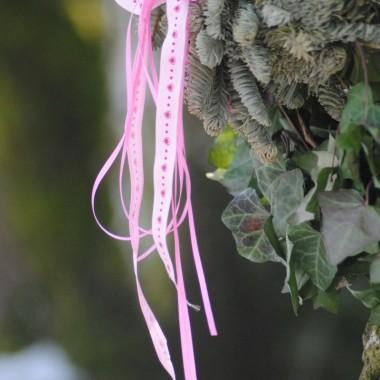 Dziś taki słoneczny dzień ,że bez aparatu nie da rady go przeżyć :) Zapraszam na poranne fotki z kolorem różowym w roli głównej :)