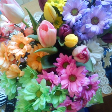 kwiaty w moim domu