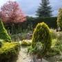 Pozostałe, Wiosna - kolejna odsłona... - Ulubiony widok z tarasu...