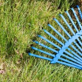 Wiosenna regeneracja trawnika w 7 krokach