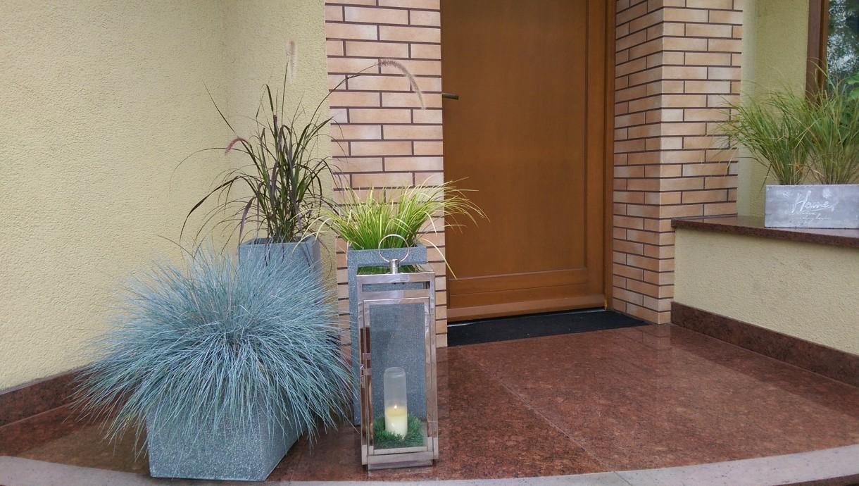 Rośliny, Wejście do domu