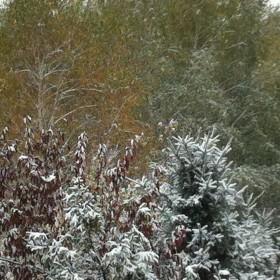 Zimowa jesień.