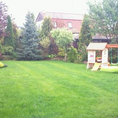ogród nadal majowo,  choć bardzo deszczowo :)