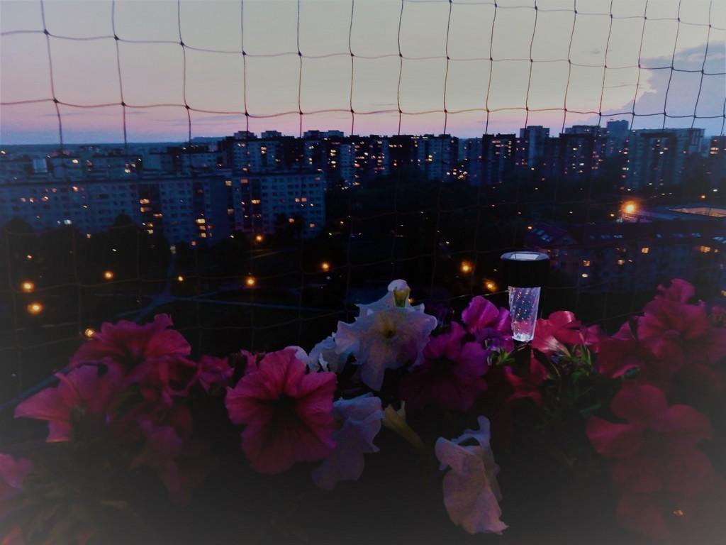 Balkon, Balkon o różnych porach dnia &#x3B;) - dzień chyli się ku końcowi.... osiedle spowija mrok