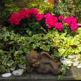 W moim malutkim ogródku