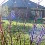 Pozostałe, Jesienne słońce w domu i w ogrodzie..