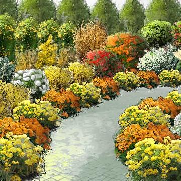 Jest to kilka najciekawszych projektów ogrodów, zaprojektowanych w ciagu ostatnich kilku tygiodni.
