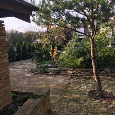 Ogród,Altanka