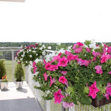 balkon:)