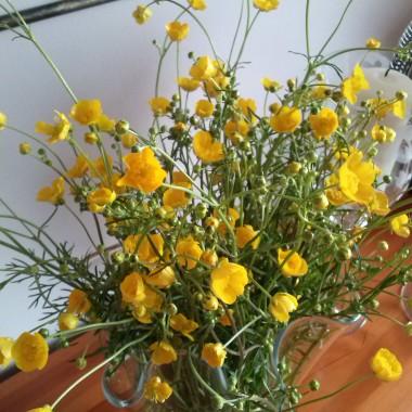 Na koniec bukiet polnych kwiatów dla Was:)))