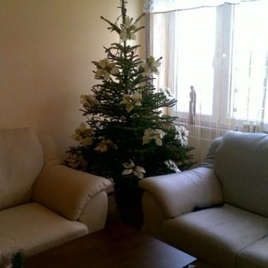 Moje pierwsze dekoracje w moim pierwszym mieszkaniu! :)