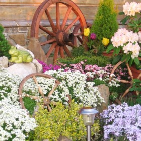 Mój ogród:)