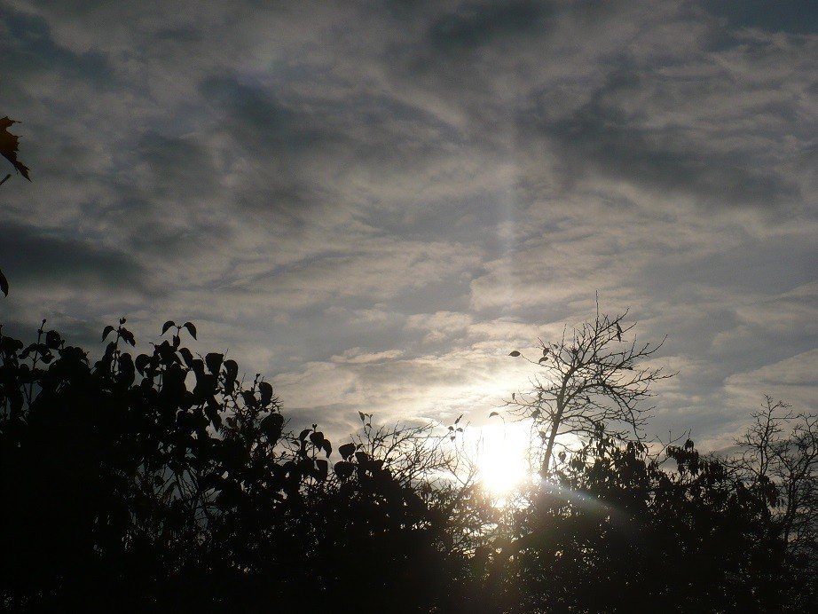 Pozostałe, Listopadowe małe radości................ - .............i jesienny poranek................