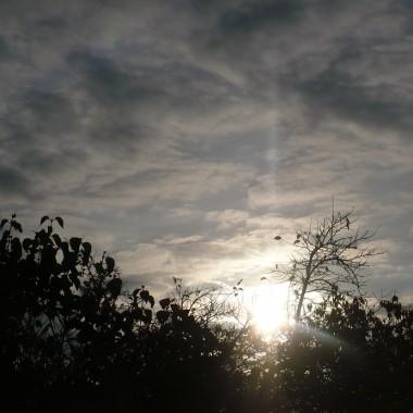 .............i jesienny poranek................