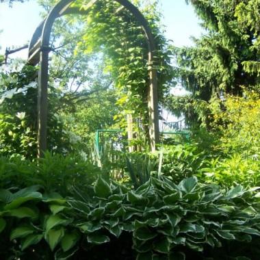 Ogród który pokochacie
