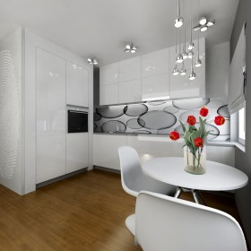 Projekt mieszkania 31m2 Katowice