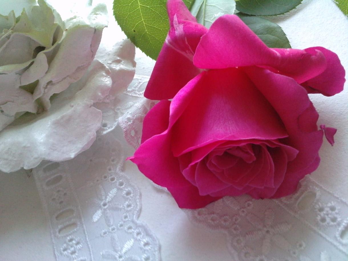 Dekoracje, Moja miłość do kwiatów