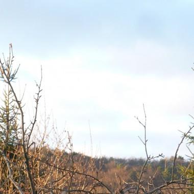 ...............i jesienna fotka................