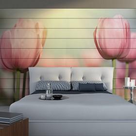Tulipany na tapecie