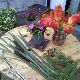 ogródek jesienią