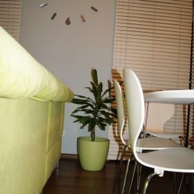 smoku70 - nowe roślinki i coś na ząb