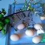 Pozostałe, Święta Wielkanocne