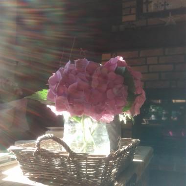 Wiejski domek zmienia się wraz z porą roku. Zima jest cudna, ale najlepiej nam w domku latem i jesienią. Kawka, herbatka, książki i rodzina. Niczego więcej nie trzeba.  Pozdrawiamy!