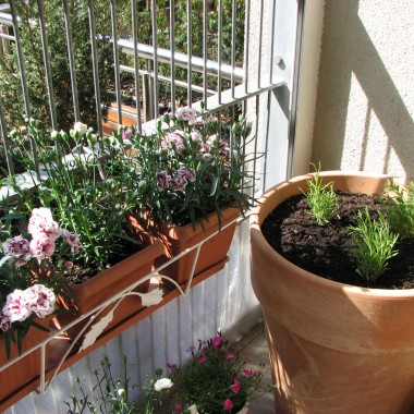 przedstawiam Wam mój balkon w wiosennej odsłonie. Taki lubię najbardziej i przy pięknej pogodzie z przyjemnością spędzam na nim czas. Zapraszam serdecznie :)