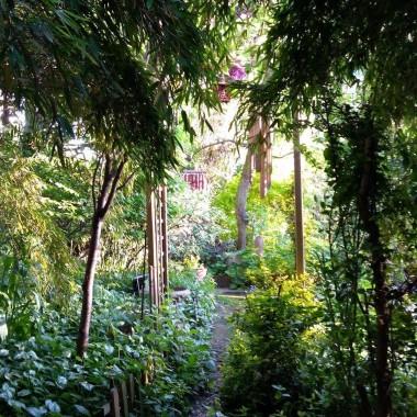 Ogród znajduje się prawie w centrum Łodzi. Jest oazą spokoju , relaksu , tajemniczości