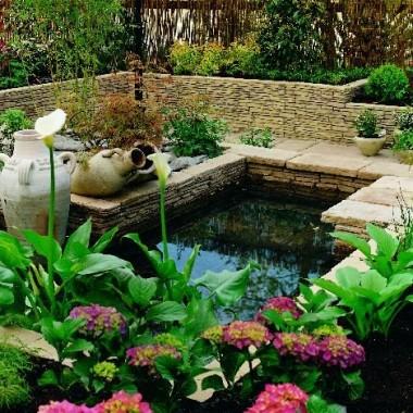 Piękny ogród