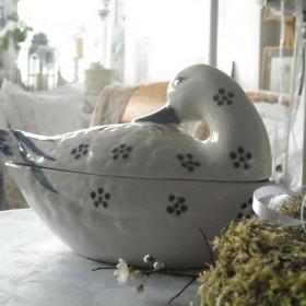 Wiosenna galeria z kaczką..............
