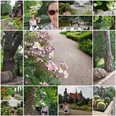 Ogród Botaniczny Wrocław
